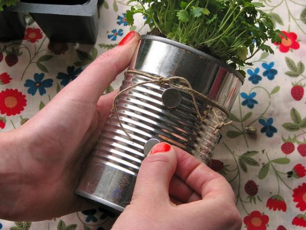 plantas-en-latas03