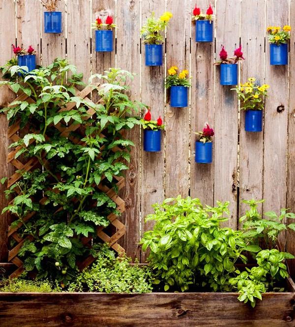 plantas-en-latas11