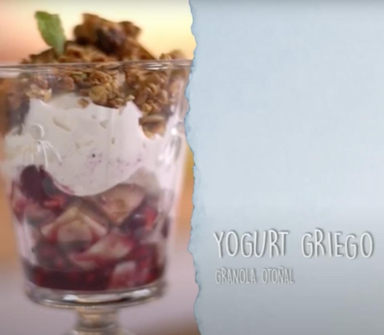 Granola, yogurt griego casero y arándanos